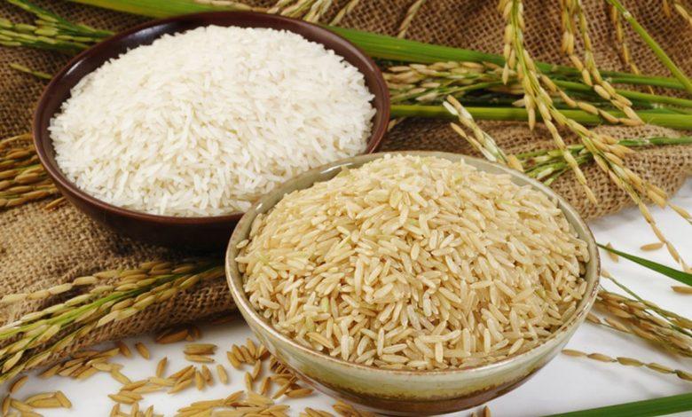 وارد کنندگان برنج پرمحصول ارزان قیمت به جای برنج لوکس 5   آفکو