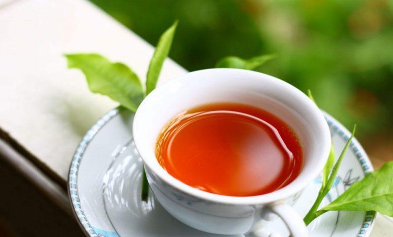 صادرات چای ایرانی به ۱۲ کشور جهان 3 | آفکو