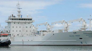 تصویر از کشتیهای یخچال دار (Reefer Vessels)