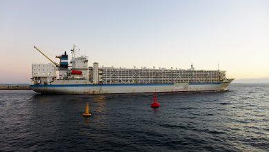 تصویر از کشتیهای دام بر (Livestock carrier )