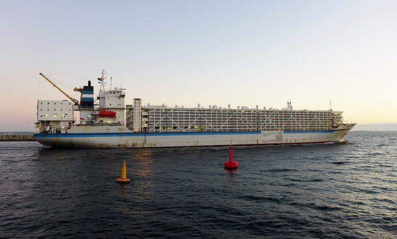 کشتیهای دام بر (Livestock carrier ) 7 | آفکو