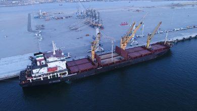 تصویر از صادرات از دروازه ملل ۳۸۱ درصد افزایش یافت
