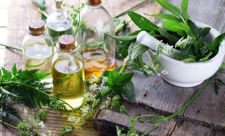 صادرات گیاهان دارویی 7 | آفکو