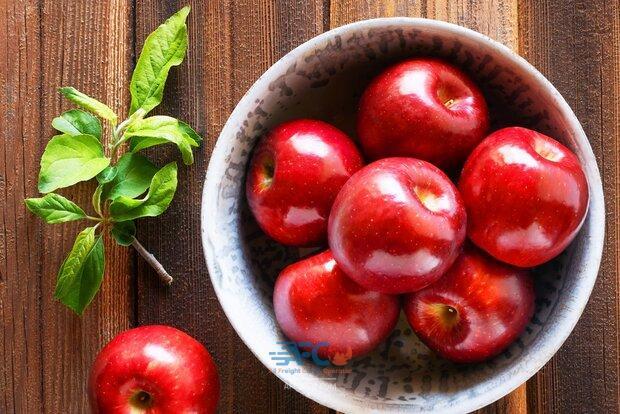 وقتی کمبود کانتینر یخچالدار برای صادرات سیب مشکل ساز می شود 5 | آفکو
