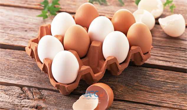 چاپ قیمت روی بسته و دانههای تخممرغ اجباری شد 5 | آفکو