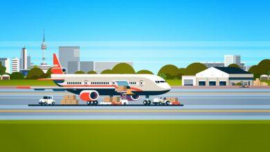 تصویر از آسیب شناسی حمل و نقل هوایی
