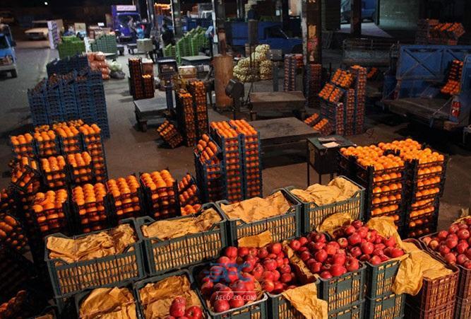 نظارت قرنطینهای بر واردات و صادرات محصولات کشاورزی 5 | آفکو