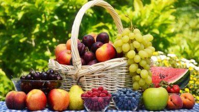 تصویر از ۸ نکته طلایی صادرات میوه به اروپا