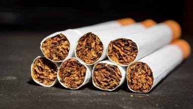 تصویر از صادرات تنباکو