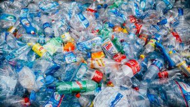 تصویر از از واردات و صادرات زباله چه میدانید؟
