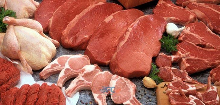 ترخیص گوشت و مرغ از گمرک 5   آفکو