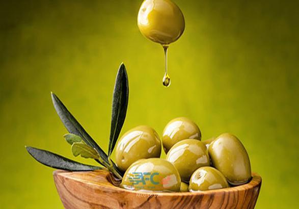نکاتی در مورد صادرات زیتون و روغن زیتون از ایران 5   آفکو