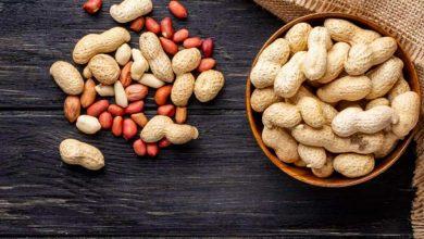 تصویر از صادرات بادام زمینی