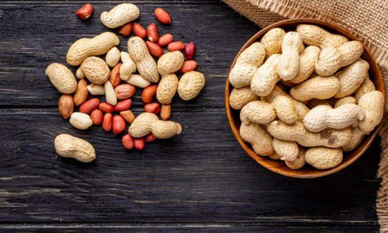 صادرات بادام زمینی 5 | آفکو