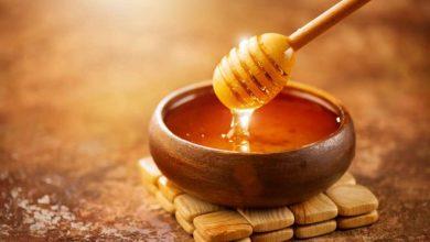 تصویر از صادرات عسل به امارات