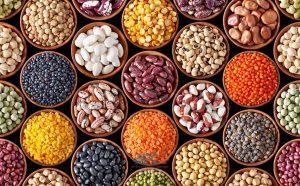 صادرات حبوبات به عراق 15 | آفکو