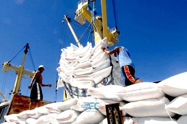 معطلی ۱۳ هزار تن برنج خارجی پشت دربهای گمرک 3   آفکو